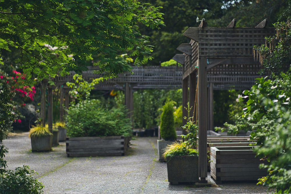 Maintenance Tips for Wooden garden canopy